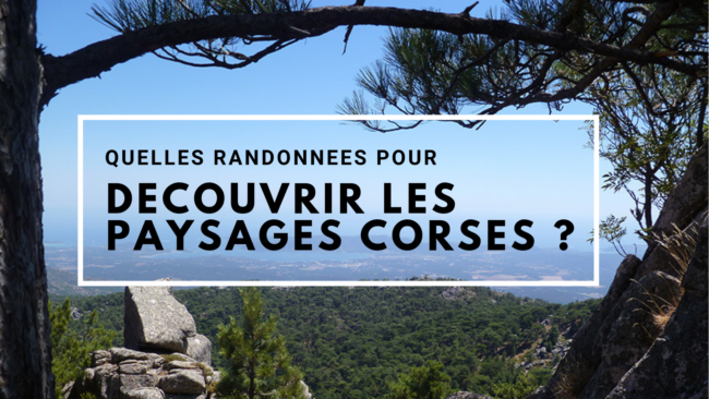 randonnees-paysages-corse-corsica-travel-for-you