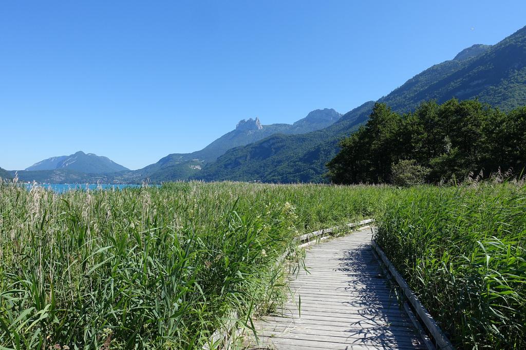 Lac d'Annecy, réserve naturelle