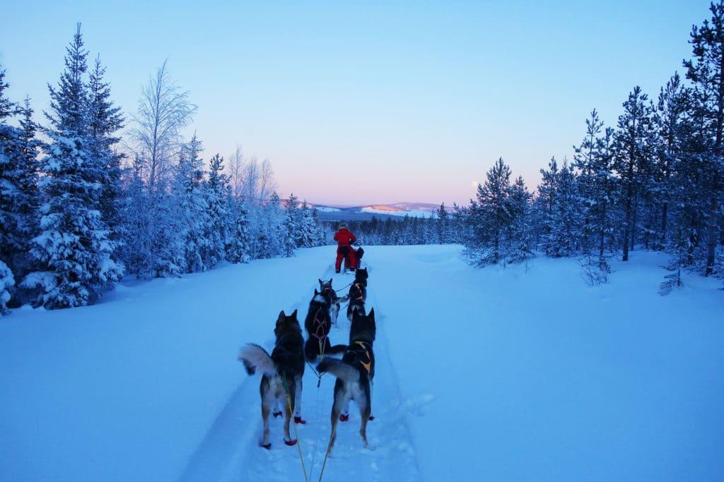 laponie finlandaise - destinations à visiter en Europe cet hiver
