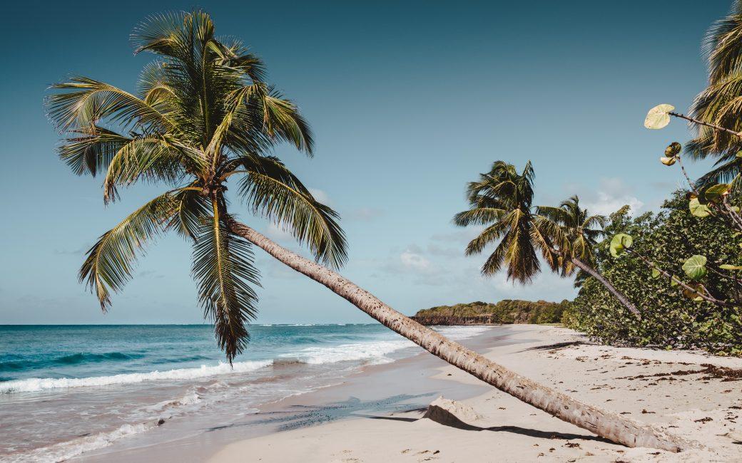 Plage paradisiaque Voyager en Martinique