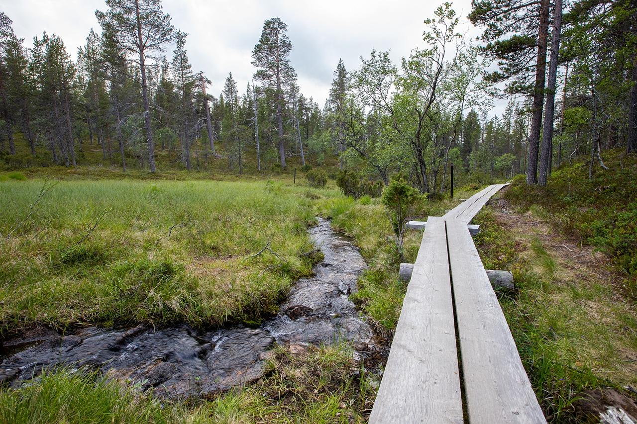 randonnée laponie finlandaise en été